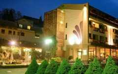 Roseo Hotel Euroterme Wellness Resort