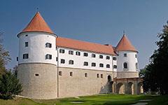 Castello Mokrice